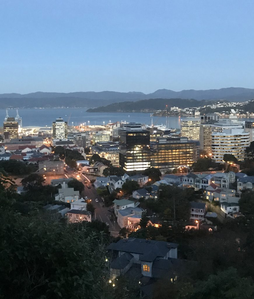 Looking South over Wellington Bay.